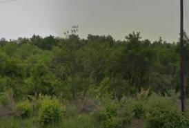 Gáspár György kertben 784 m2 telek eladó.